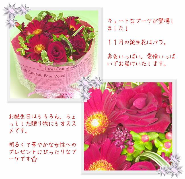【あす楽16時まで受付】(スカーレット)誕生花...の紹介画像3