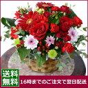 【誕生日プレゼント 女性】あす楽【バラ】デザイナー3000円コース お誕生日 花 バラのアレンジ 花