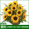 お誕生日 花 ユリ・ひまわり・バラ ・ガーベラ・父の日 あす楽 送料無料 アレンジ 花束 結婚祝い 即日発送 敬老