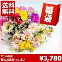 【送料無料】花 ギフト季節の花いっぱいの生花の福袋