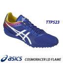 Ttp523