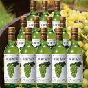 アニー 生ワイン フルボトル お得な12本セット(北海道産ぶどう 白ワイン)果実酒