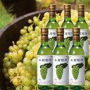 楽天ギフト通販 アニーのお気に入りアニー 生ワイン お得なフルボトル6本セット(北海道産 白ワイン)果実酒