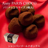 ふんわりなめらかな口どけ・・【冬季限定】アニーパリチョコ 4粒(Sサイズ) トリュフチョコレート