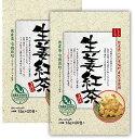 【お試し価格】生姜紅茶(1.5g×20包入/2袋)【生姜 熊本産 国産 ジンジャーティー】