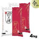【令和元年産】新潟県産 新之助 4kg (2kg×2袋) 新潟米 新ブランド米 コシヒカリ 新米
