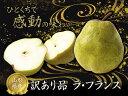 【 送料無料 】山形産 ラ・フランス 訳あり 洋梨 約 2kg 4個〜10個 洋梨 洋なし 果物 フルーツ 家庭用 自宅用