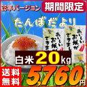 米 20kg 送料無料 (国内産ブレンド米) お米 20キロ 訳あり『たんぼだより(白米10kg×2)』【RCP】