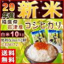 コシヒカリ 10kg(5kg×2袋) 新米 福島県産 お米 米 29年産 会津産 送料無料 特A『2