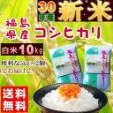 コシヒカリ 10kg(5kg×2袋) 新米 福島県産 お米 ...