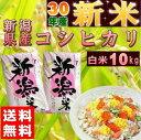 新米 コシヒカリ 10kg(5kg×2袋) 新潟県産 お米 ...