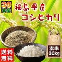 30kg コシヒカリ 玄米 お米 30年産 福島県産 送料無...