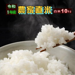 10kg お<strong>米</strong> 白<strong>米</strong> 安い 元年産 訳あり ブレンド<strong>米</strong> 国内産 送料無料『令和1年農家直<strong>米</strong>白<strong>米</strong>10kg』 【RCP】
