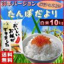 米 10kg 送料無料 (国内産ブレンド米) お米 10キロ...