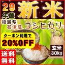 新米 30kg コシヒカリ 玄米 お米 米 29年産 福島県産 会津産 送料無料 特A 20%OFFクー
