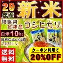 コシヒカリ 10kg(5kg×2袋) 新米 福島県産 お米 米 29年産 会津産 送料無料 特A 2