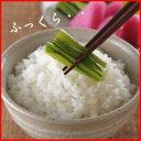 【米 28年】『農家直米白米10K』【RCP】【米 10kg ...