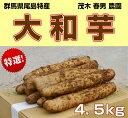群馬県尾島特産 大和芋 特選品(AA棒) 4.5kg やまといも とろろ芋