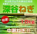 埼玉県深谷市中瀬地区栽培 深谷ネギ 10Kg ふかやねぎ