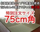 置き畳 赤ちゃん安心 サイズオーダー フローリング畳マット半畳 75cm角