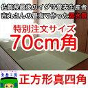 畳マット 置き畳【ちょこんと70cm】【つかまり立ち始めの赤ちゃんに】 ユニット畳 サイズオーダー フローリング 畳 半畳 琉球畳 い草 国産
