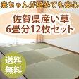 置き畳 ユニット畳 国産い草 佐賀県産イグサ 半畳12枚セット