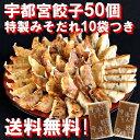 送料無料!特製みそだれで美味しい!本格・宇都宮餃子50個入り!直営店の味をご家庭で!