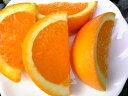 お試し品です!限定なのでお急ぎ下さい!ジューシーな清見オレンジのプチサイズわけあり♪【送料込】プチサイズ清見オレンジ 1.8キロ【お試し】【送料無料】【お買い得】【限定品】