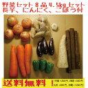 野菜セット8品5kgセット 青森県産長芋、ごぼう、にんにく付!