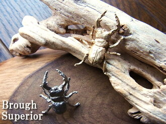 A real insect motifs stag beetle brooch pins / gender can use both TEITAC pin brooch 2 colors 11502P04Aug13