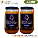 【送料無料】マヌカハニー MGO40+ 大容量 500g×2 計1kg POLLEN NATION 非加熱 無ろ過 天然はちみつ 生 はちみつ 無添加 純粋はちみつ 蜂蜜 manuka セット割