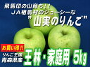 JA相馬村【家庭用・王林(おうりん)】5kg(18-20玉)