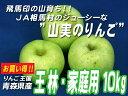 JA相馬村【家庭用・王林(おうりん)】10kg(36-40玉)※同梱不可です!