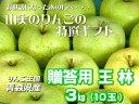 JA相馬村【贈答用・王林(おうりん)】3kg(10玉)