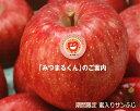 JA相馬村【みつまるくん】蜜入りサンふじ2kg(7-8玉)※ご用意が出来次第の発送