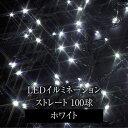 イルミネーション LED/2in1 イルミネーション ストレート 100球 ホワイト LIT-ST100W/クリスマス/ライト/電飾/照明/屋外/タカショー