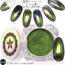 【65#インセクト グリーン】【2S2Tマジックレインボーメタルミラーパウダー】クロムパウダー/ユニコーンパウダー/オーロラ/クロムピグメント/メタリック/鏡面/ミラー/パウダー/グリッター/パール/Magic Metal Rainbow Mirror Powder/ Insect Green