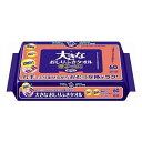 《日本製紙》 アクティ ラクケアシリーズ 大きなおしりふきタオル 無香料 厚手・大判 60枚入 (250mm×200mm)