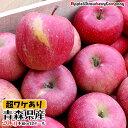 【木箱入り】青森 りんご サンふじ 20kg 送料込み 産地...