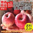 \在庫限り!/【品種おまかせ】青森りんご 10k...
