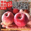 \在庫限り!/【品種おまかせ】青森りんご 【超小玉】青森産 りんご 17kg 訳あり 超