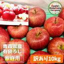 青森県産 有袋ふじ 訳あり10kg(16〜20玉入×2段)ク...