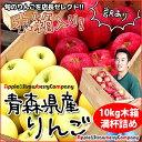 木箱 or ダンボール 選べます★訳あり10kg★本場青森・津軽のリンゴがたっぷり10kg!