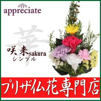 保佛鮮花為 [breservedflower 法國花卉 / 鮮花 / 你的佛 / 產品 / 哀悼 / 禮品 / 保存完好的佛像花保留保留保留法國花卉的佛花的佛花
