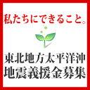 ★被災者の方々にエールを!!★◆私たちにできることを!◆東北地方・太平洋沖地震 赤十字募金 義援金受付中※こちらの商品に限り、他の商品との同梱で送料無料にはなりません。