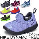 Dynamo_01