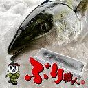 【鹿児島産ぶり・冷蔵】1尾(約5kg)■ ぶりラウンド・ブリ刺身
