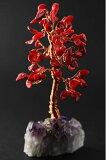 丰说|财富|电源石材|丰水|财富|电源石材|珊瑚红色|迷你树|(10评语填写承诺购买后写了检讨?%的折扣)| - 马拉松10页;[風水|パワーストーン|赤珊瑚|ミニツリー|天然石|パワーストーン|【RCP】 10P04Jan15]