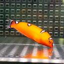 ツユベラ 幼魚 4-6cm±! 海水魚 ベラ 餌付け15時までのご注文で当日発送【ベラ】