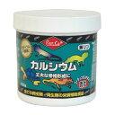 爬虫類 トカゲ カルシウム ビタミン リクガメ 添加剤 エサ サプリメント/ レップカル カルシウム微粒 93.5g【05P03Dec16】